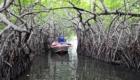 madu-ganga-boat-ride
